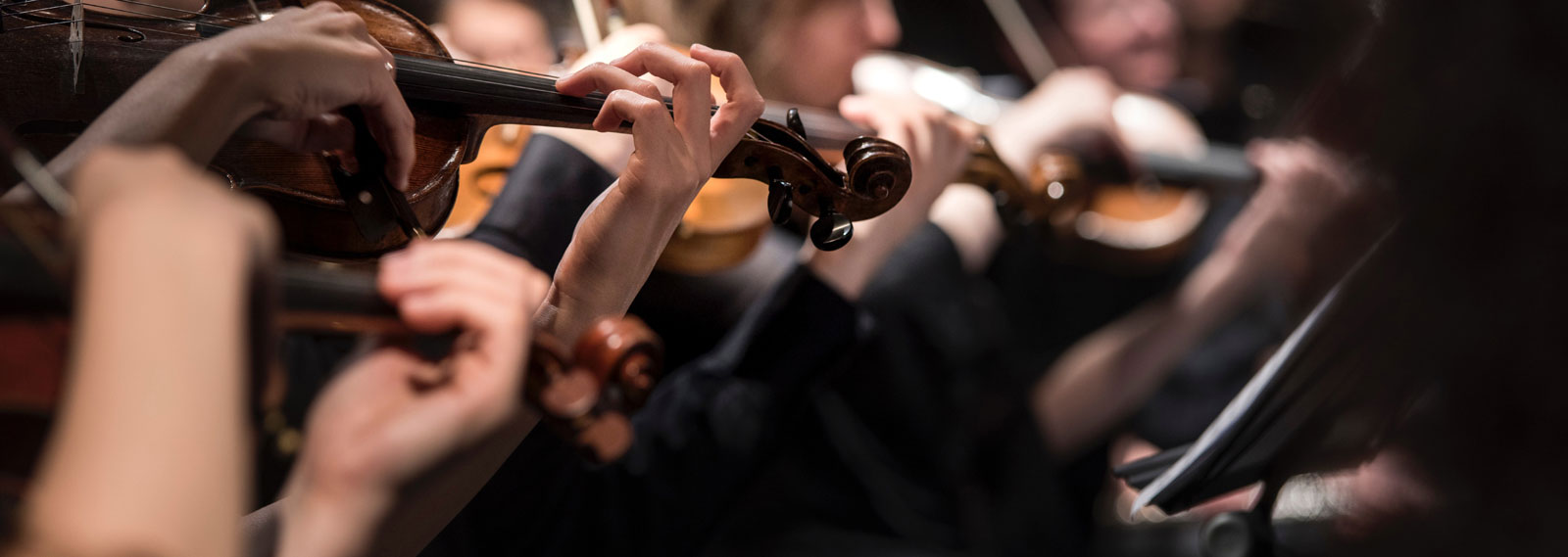 Closeup of a violin concerto